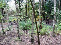 Widok ze wzgórza, w dole na ściezce Krzysztof i jego rower, a nieco dalej wody jeziora