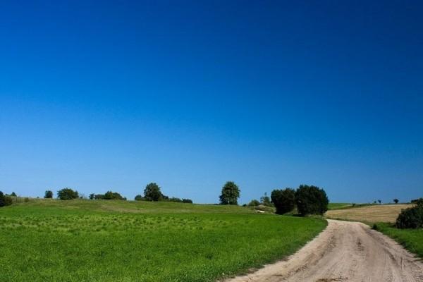 zdjecie,600,212824,20110827,mazurskie-krajobrazy.jpg