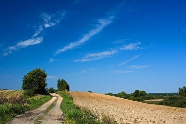 zdjecie,600,212826,20110827,mazurskie-krajobrazy.jpg