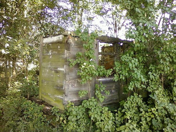 Ruiny domu