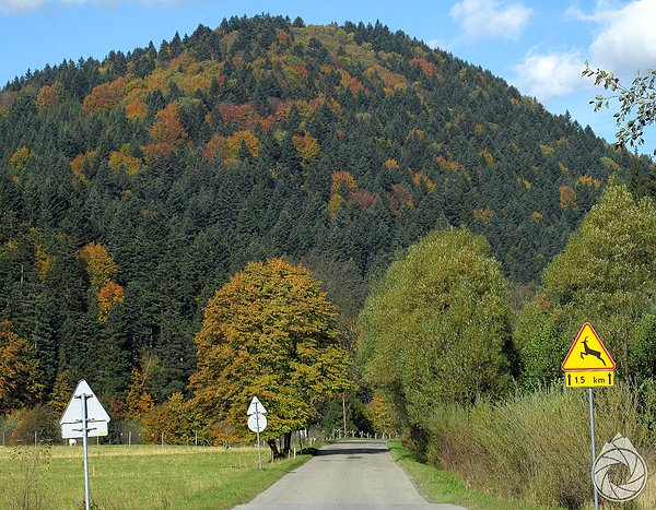 Jodlowa Banicka Góra