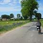 Na drodze z Cieśli do Potulic doganiam tubylca na rowerze