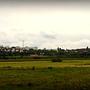 Panorama Gorzowa zza Warty