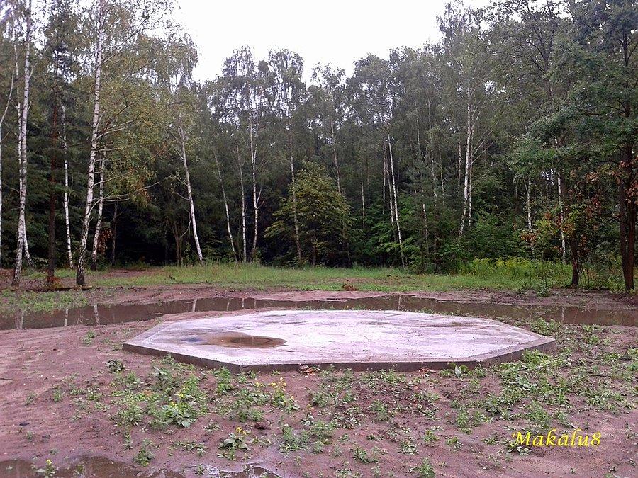 Korek szybu w Miechowickim lesie